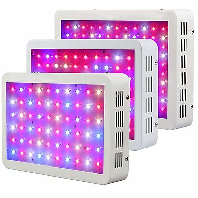 BLOOMSPECT LED Grow Light for Hydroponic Veg Flower Veg Various Kind Wattages