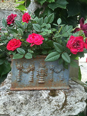 Antique French square garden cast iron Jardiniere planter trough plant pot
