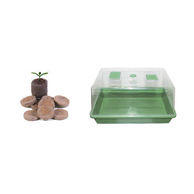 Kit Germinazione Mini Starter 35x25x19cm + Jiffy 12pz