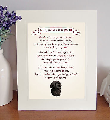 "Newfoundland 10"" x 8"" Free Standing Thank You Poem Fun Novelty Gift FROM THE DOG"