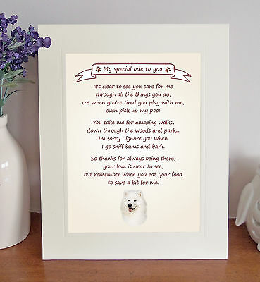 Samoyed Thank You FROM THE DOG Poem 8 x 10 Picture/10x8 Print Fun Novelty Gift