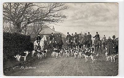 FIFE FOX HOUNDS: Fife postcard (C10770)