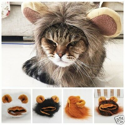 Pet Costume Lion Mane Wig Head Warmly Hat for Dog Cat Festival Clothes With Ears