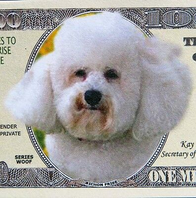 Bichon Frise dogs FREE SHIPPING! Million-dollar novelty bill