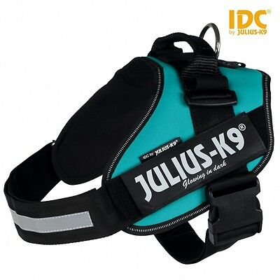 Dog Harness Julius-K9 IDC® Powerharness - Petrol | All Sizes