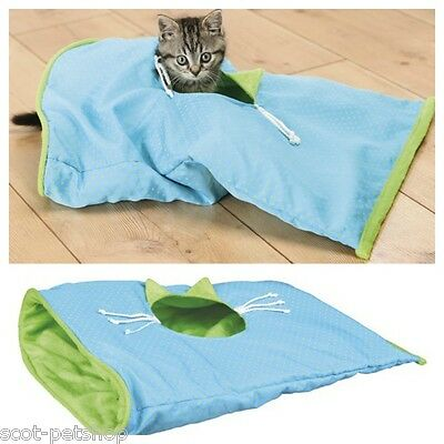 Small Cat & Kitten Play Bag Crackle Sack Light Blue / Green