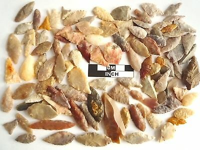 Neolithic Arrowheads x 100, Selection of Styles and Sizes - 4000BC - (0766)