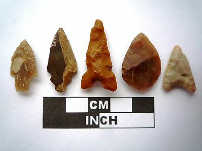 5 x High Quality Neolithic Arrowheads - 5 Different Styles - 4000BC - (K091)