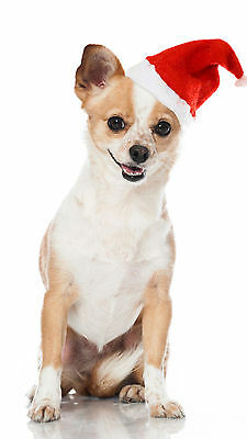 Armitage Good Boy Christmas Xmas Santa Hat for Dogs and Puppies