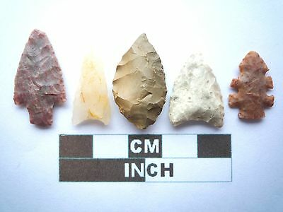 Neolithic Arrowheads x5, High Quality Selection of Styles - 4000BC - (W010)