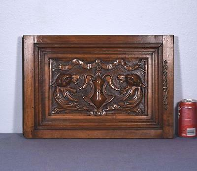 *French Antique Renaissance Revival Panel/Door in Walnut Wood with Griffons 2