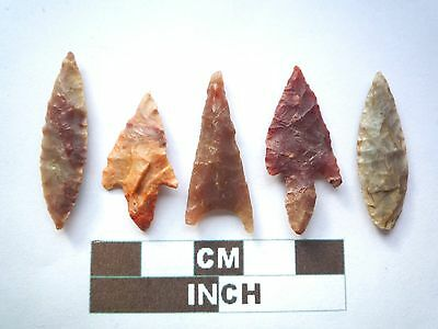 Neolithic Arrowheads x 5, Higher Quality, Genuine Artifacts from 4000BC  (V029)
