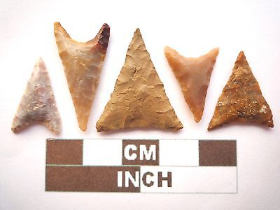 Neolithic Arrowheads, 5 x Triangle Style Artifacts - 4000BC - (Z057)