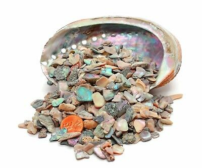 """Tumbled Natural Abalone Pieces Sold in 1/2 pound bags Size 1/4""""-1/2"""""""