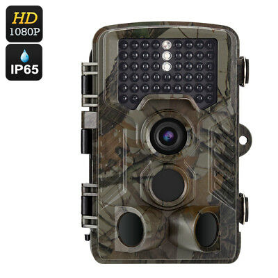 """Fototrappola FHD 1080P 12 Mesi Stand-by Display 2.4"""" IR CUT Visore Notturno"""