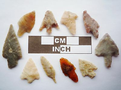 Neolithic Arrowheads, 10 x Barbed and Tanged Artifacts - 4000BC - (R012)