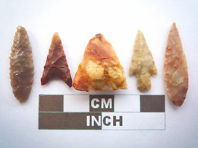 Neolithic Arrowheads x5, High Quality Selection of Styles - 4000BC - (X075)