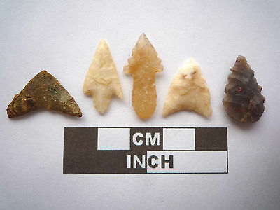 5 x High Quality Neolithic Arrowheads - Selection of Styles - 4000BC - (O020)