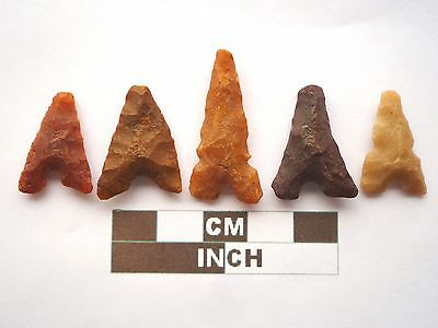 Neolithic Arrowheads x 5, Eiffel / Moroccan Points, Genuine - 4000BC  (Z033)