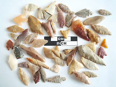 Neolithic Arrowheads x 50, Selection of Styles and Sizes - 4000BC - (0498)