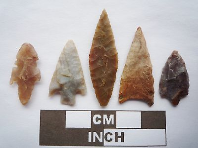 Neolithic Arrowheads x5, High Quality Selection of Styles - 4000BC - (Q111)