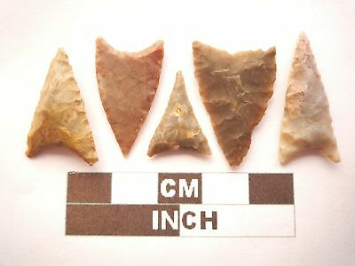 Neolithic Arrowheads, 5 x Triangle Style Artifacts - 4000BC - (Z061)