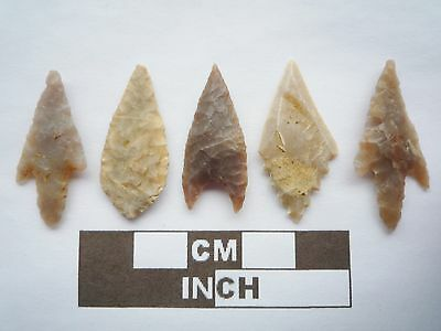 Neolithic Arrowheads x5, High Quality Selection of Styles - 4000BC - (Q079)