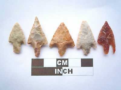 Neolithic Arrowheads, 5 x Barbed and Tanged Artifacts - 4000BC - (Z044)
