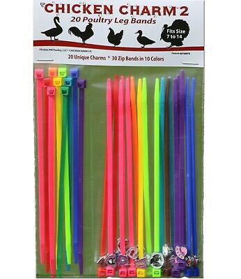 NEW! 20 Chicken Charm ™ 2 Poultry Leg Bands ~ Chicken,Geese,Duck Size 7-14