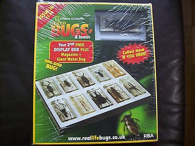 National Geographic Real-life Bugs & Insects magazine Issue 10