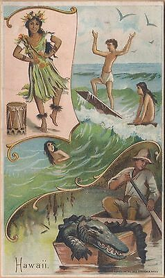 Victorian Trade Card-Arbuckle Bros Coffee-States Series #27-Hawaii-Surfing