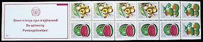 Suriname stamps booklet - Tropical fruits_1980 - MNH.