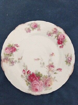 AMAZING 1905-8 Thomas and Ens Hand Painted Porcelain Plate