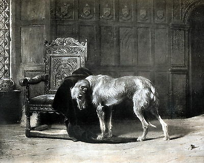 8x10 RIVIERE Art Print THE EMPTY CHAIR Deerhound Dog Mourning Death of Master