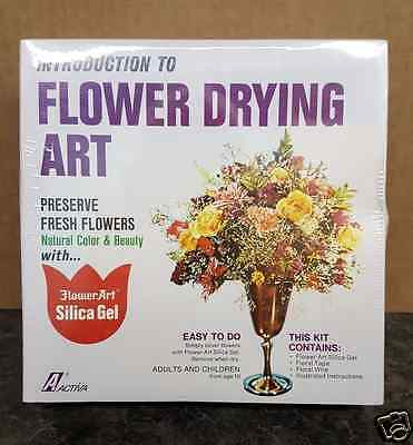 Activa Introduction to Flower Drying Art Kit
