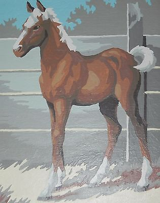 Chestnut Horse With White Mane & Tail at Ranch In Frame Vintage Paint by Number