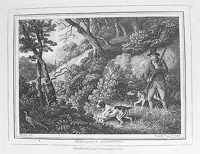 OLD ANTIQUE PRINT PHEASANT SHOOTING c1812 by S HOWITT ORME GAME BIRDS ENGRAVING