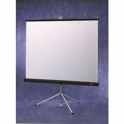 Draper Matte White Diplomat / R Portable Screen with Black Carpeted Case - 100''