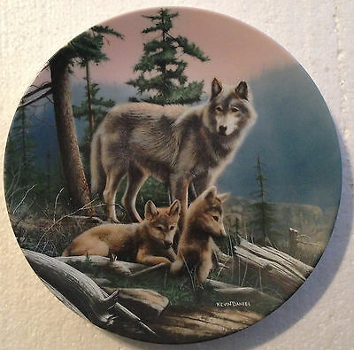 COLLECTABLE WOLF PLATE 8 1/4 INCHES - FIRST OUTING by KEVIN DANIAL- BRADEX