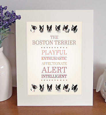 "Boston Terrier 10"" x 8"" Mounted Breed Traits Print Picture Fun Novelty Gift"