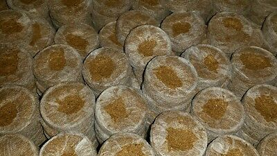 300x Jiffy-7C 50mm COIR pellets for plant propagation cuttings and seedlings