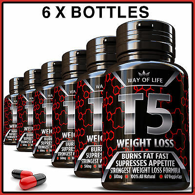 360 T5 Fat Burner Capsules 100% Strongest Legal Slimming Diet Pills Weight Loss