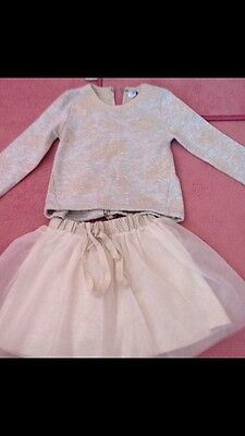 girls designer (special day) tulle skirt and top