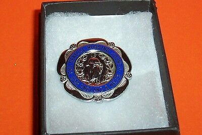 General Nursing Council Badge For England And Wales Wright 78969 Boxed
