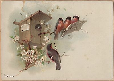 Victorian Trade Card-Singer Sewing Machines-Birdhouse & Singing Robins