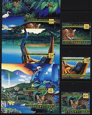 UN  . All Three Offices . 1998 Rain Forests Stamps + Sheets . Mint Never Hinged