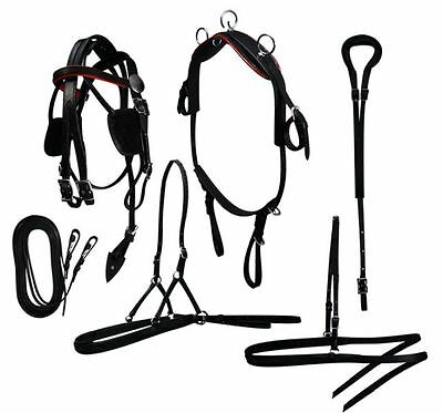 Mini Horse / Small Pony size leather driving harness