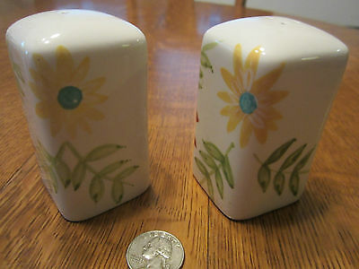 Vintage Hand Painted China Floral Salt & Pepper Shakers