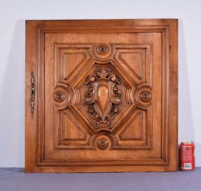 French Antique Renaissance Revival Panel/Door in Solid Walnut Wood