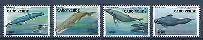 Cabo Verde - 2003 -  Baleias - Whales / MNH - ( ** )